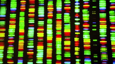 Transformative Genomics: England Begins Daunting Task of Sequencing 100,000 Genomes by 2017 | Amazing Science | Scoop.it