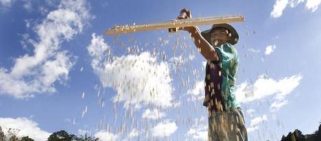 Multinationales vs paysans africains : qui profite de la Nouvelle Alliance du G8 ? | Questions de développement ... | Scoop.it