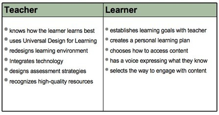 Personalize Learning: The Expert Learner with Voice and Choice | Wiki_Universe | Scoop.it