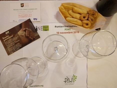 Vitigni Resistenti: una serata alla scoperta dei Vini PIWI | Fondazione Mach | Scoop.it