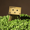 Best of Danbo