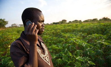 Using ICT tools to cut carbon emissions and improve agriculture - The Guardian | Climate Smart Agriculture | Scoop.it