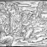 Ciencia y maleficios en la Edad Media