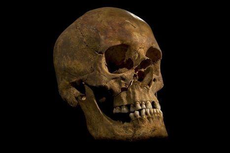 (Dead) kings and queens history - History Matters - University of ... | History Dept Guernsey Grammar School | Scoop.it