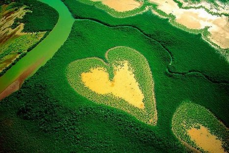 Earth From the Air: Photos by Yann Arthus-Bertrand | Visions aériennes | Scoop.it