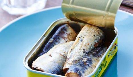Les prix des conserves de poissons vont augmenter   Nature to Share   Scoop.it