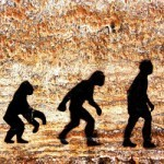 The Darwinian Approach to Business Survival - Learn to respond to Change!   Business change   Scoop.it