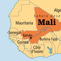 Mali offers free .ML domains to anyone. What could *possibly* go wrong?   Libertés Numériques   Scoop.it