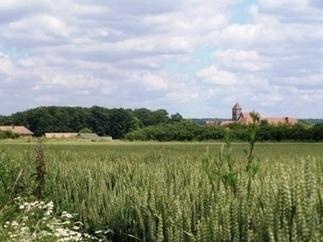 Participer à la transition écologique de l'agriculture - Métropolitiques | AGRONOMIE VEGETAL | Scoop.it