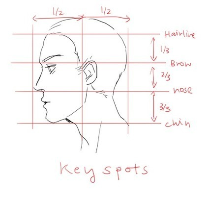 profile drawing reference guide drawing refer