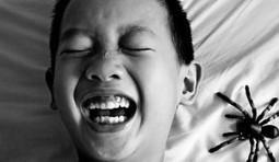 Paura e panico, nel cervello  prendono strade diverse | Professione psicologo | Scoop.it