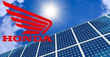 Negli USA acquisti l'auto elettrica (o ibrida) e installi gratis i pannelli solari sul tetto   Alimentazione Naturale Vegetariana   Scoop.it