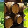 Wine tourism of Bordeaux
