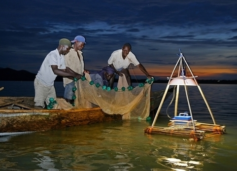 Solar: Off-grid lighting at Lake Victoria | Energy SMEs in Developing Countries | Scoop.it