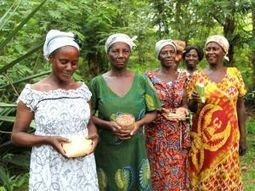 Ghana's women farmers resist the G7 plan to grab Africa's seeds | Christ in the Market Place | Scoop.it