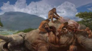 Climate Change Impacts Human Evolution   On Being Human   Scoop.it