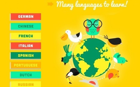 What Language Should You Learn? - doQuizZ | Dev-web2 | Scoop.it