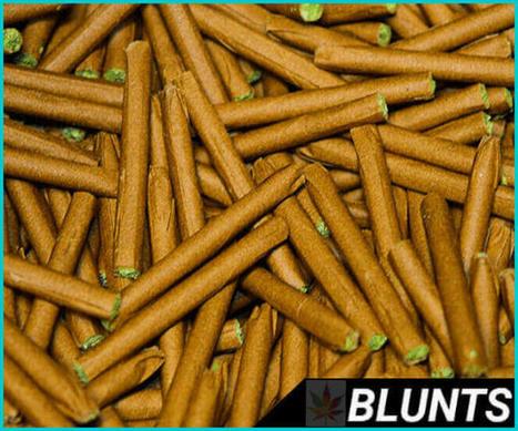 Learn How To Roll A Blunt In 7 Brazen Steps | howtorollablunt1 | Scoop.it