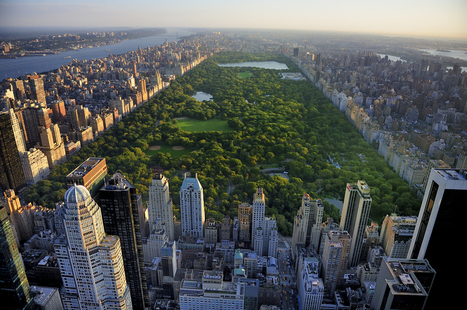 Largest-Ever Coalition of Cities Takes on Climate Change | Peer2Politics | Scoop.it