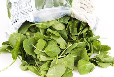 Dole Recalls Bagged Spinach Over Salmonella Risk | Amanda Carroll | Scoop.it