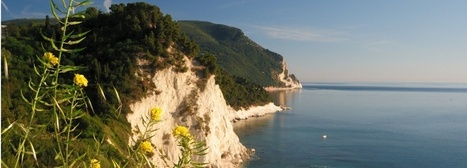Marche Holidays 2014 | Le Marche another Italy | Scoop.it