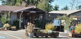 Mendocino County Adventures | Mendocino County Living | Scoop.it