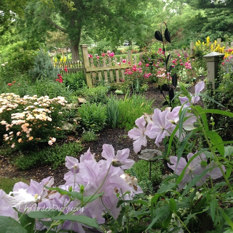 Bloom Thyme Friday: The Garden is Open | All Things Rose | Scoop.it