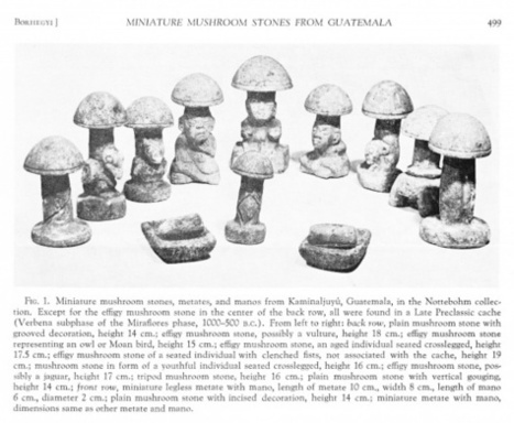 THE ORIGIN OF A MUSHROOM RELIGION IN THE NEW WORLD | ancient history | Scoop.it