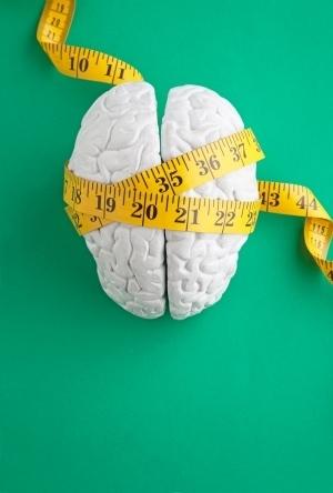 Human brain shaped by duplicate genes | Bioinformatics Training | Scoop.it