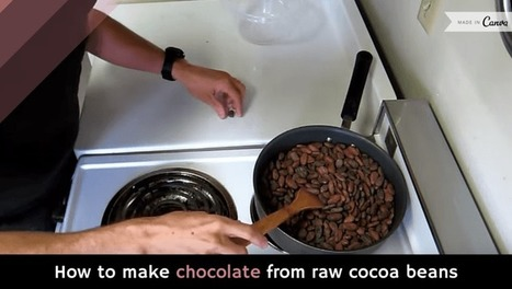 How to make chocolate from raw cocoa beans [video] | Swtich To Veganism | Scoop.it