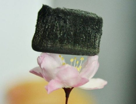 You can now 3D print the world's lightest material - graphene aerogel | 3D Printing and Innovative Technology | Scoop.it