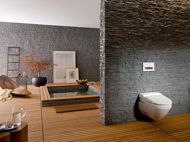 39 toilettes 39 in la revue de technitoit. Black Bedroom Furniture Sets. Home Design Ideas