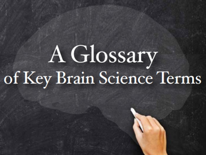 (EN) (PDF) - A Glossary of Key Brain Science Terms | dana.org | Glossarissimo! | Scoop.it