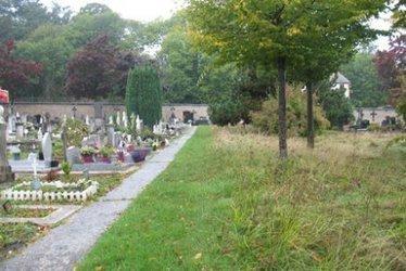 Versailles invente le cimetière aux herbes folles | Développement durable en France | Scoop.it