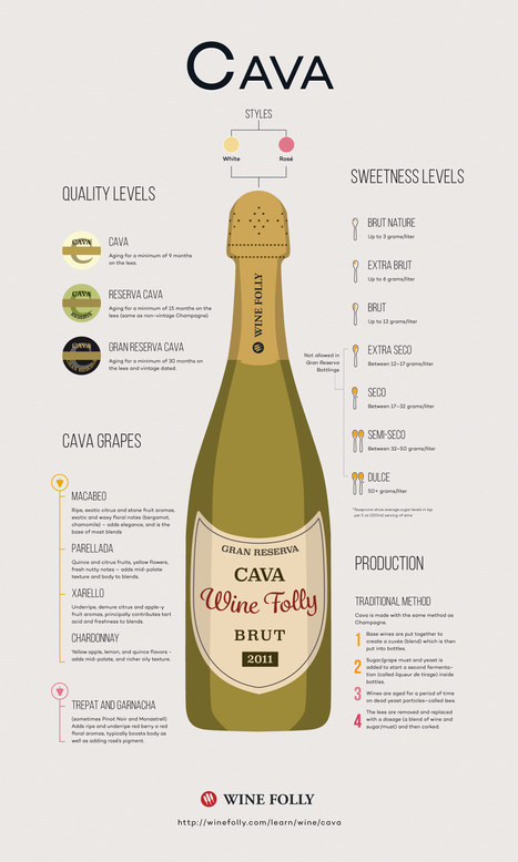 Outstanding Finds in Cava Sparkling Wine   Wine website, Wine magazine...What's Hot Today on Wine Blogs?   Scoop.it