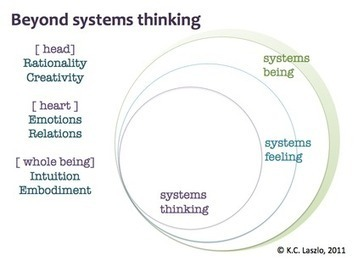 From Systems Thinking to Systems Being | Decision Intelligence | Scoop.it