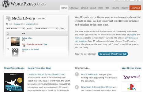 WordPress | Social media kitbag | Scoop.it