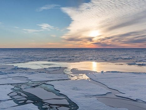 Understanding Causes and Effects of Rapid Warming in the Arctic - Eos | Oceans and Wildlife | Scoop.it