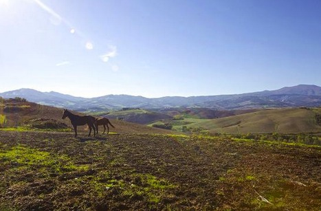 Make the Most of your Tuscany Voyage this Christmas Season | My favourite Collection | Scoop.it