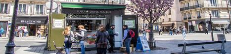 Des services au quotidien avec «Lulu dans ma rue»   Associations - ESS - Participation citoyenne   Scoop.it