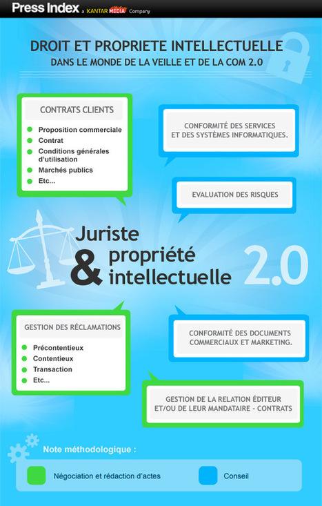 L'évolution de l'application du droit en matière de veille média | | Web 2.0 et Droit | Scoop.it