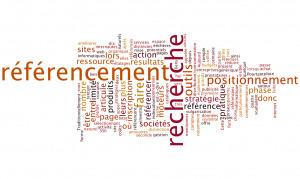 La visibilité sur le web pour dépasser le référencement naturel | Stratégie, marketing & communication pour les experts | Scoop.it