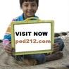 PED 212 ASH Course Tutorial(ped212.com)