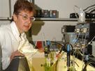 Chemistry of Baking Ingredients 1: How Much Baking Powder Do Quick Breads Need? | Química ciencia tecnología y sociedad | Scoop.it