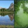 Eutrophicatioin of Lakes
