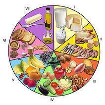 que es la alimentacion saludable wikipedia