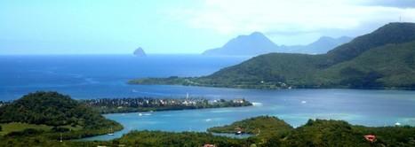 Randonnée Piton Crève Cœur - Martinique   Voyage Martinique   Scoop.it