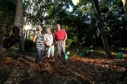 Cocky carnage - inMyCommunity - Perth, Western Australia | Nature + Economics | Scoop.it