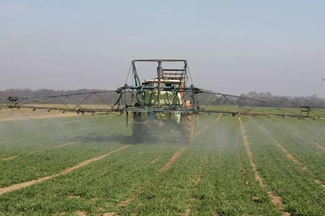 Les pesticides chimiques sur la sellette   Sustainable agriculture   Scoop.it