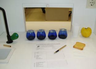 Programa de perfeccionamiento para expertos en análisis sensorial   Jus d'Olive   Scoop.it